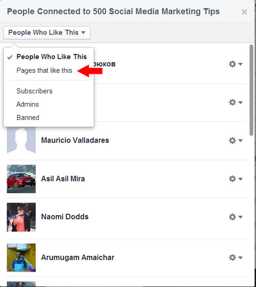 how-to-see-facebook-page-likes-2.png