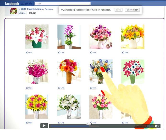 http://www.facebook-successstories.com/1-800-flowers/