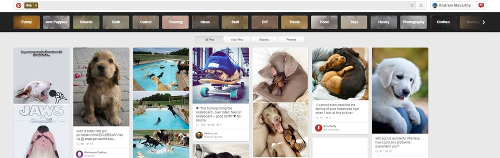 pinterest-guided-search-for-business-6.JPG