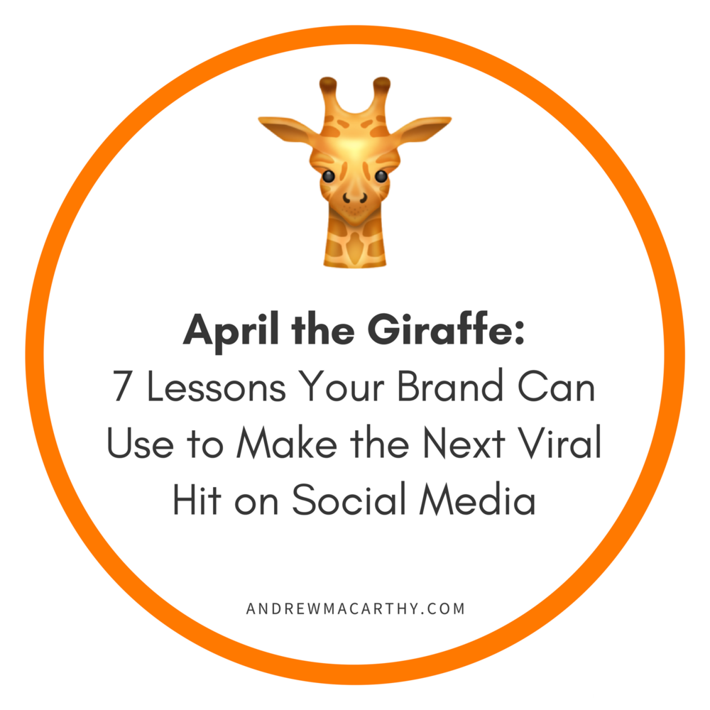 april-the-giraffe-marketing-strategy-social-media.png