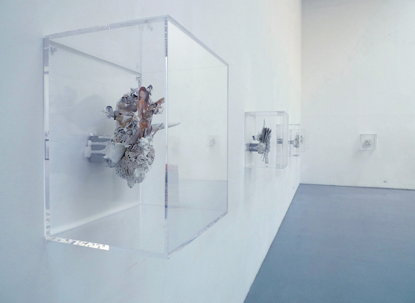 Fragments  - Installation View