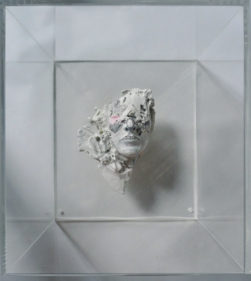 """Schema #2"" 2012  Clay, metal, Plaster and Vandalism In Plexiglas Box (17.5x13.5x19.5"")"