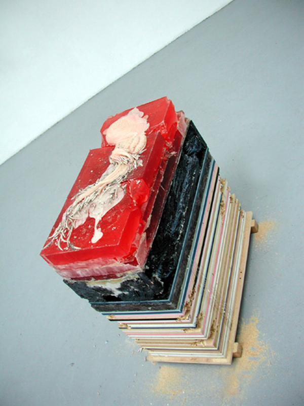 """Poetics of Space"" 2012   Wax, Plywood and Resin (H36xW16xL34"")"