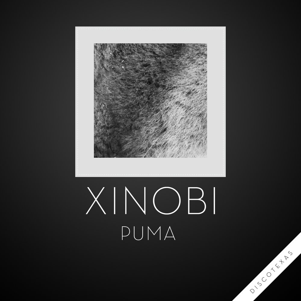 DT033: Xinobi - Puma