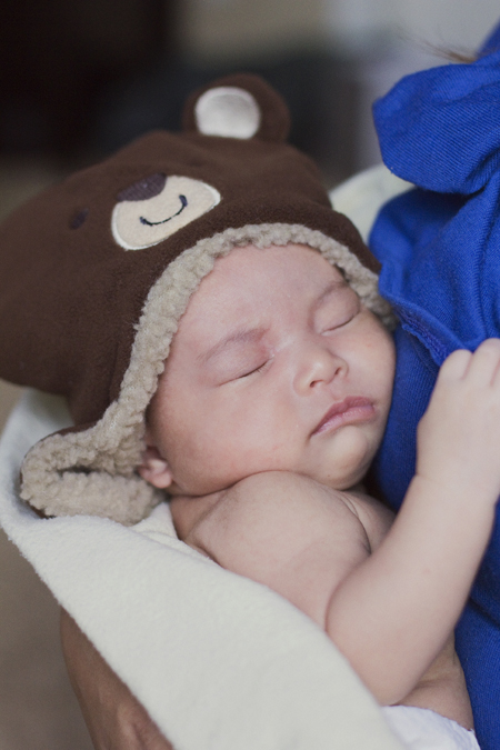 Bear FamilyDec 8 2012_68 v2.jpg