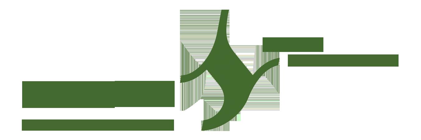 Segura Consulting Logo