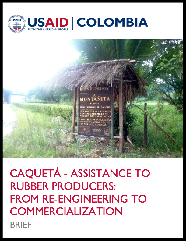 CELI Case Study Brief - Caqueta