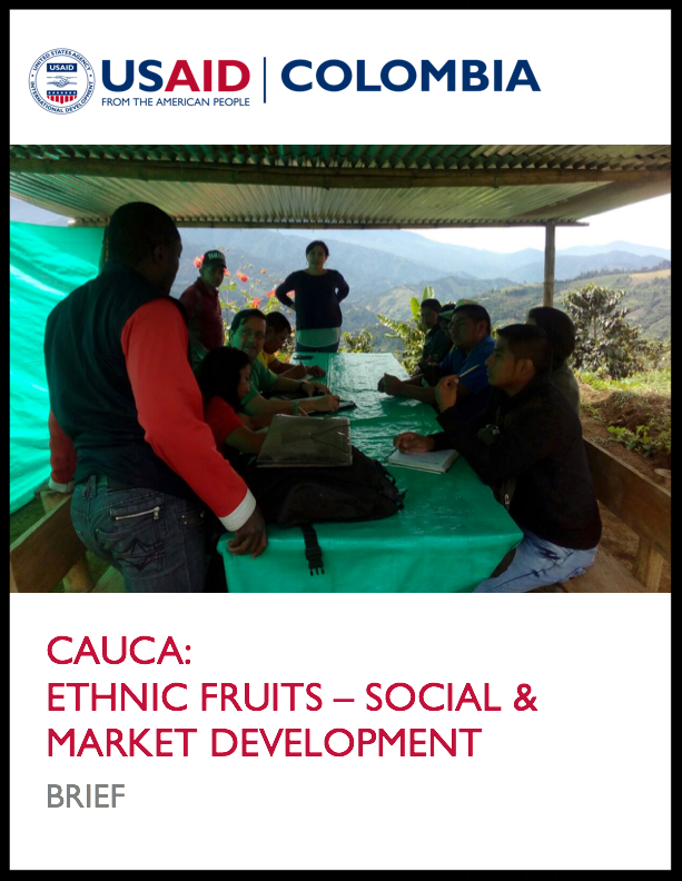 CELI Case Study Brief - Cauca