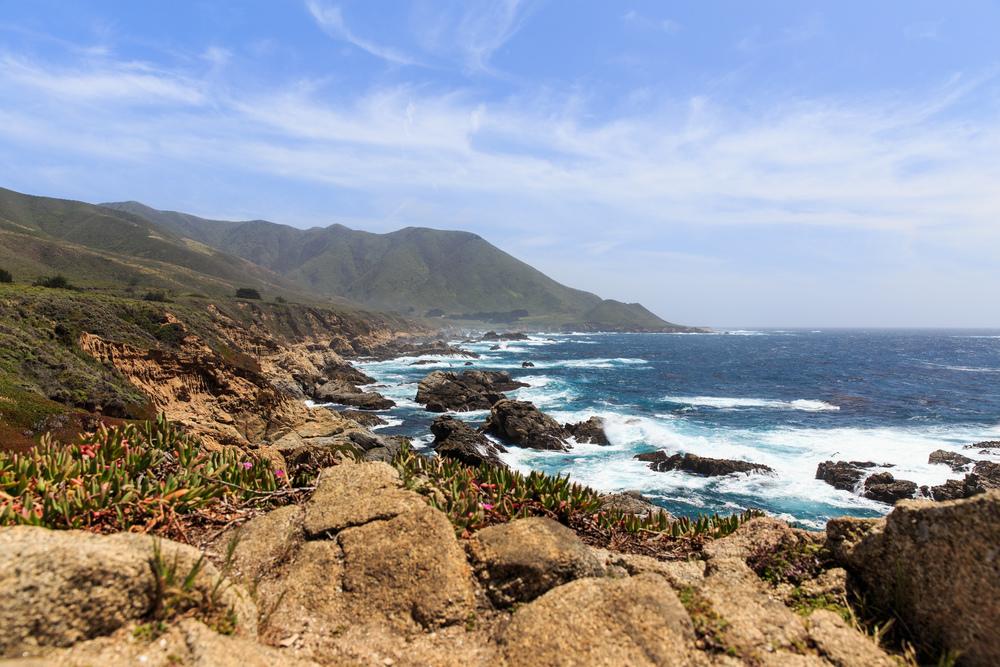 California-2496.jpg