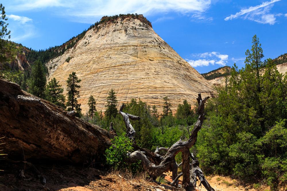 Utah-3100.jpg