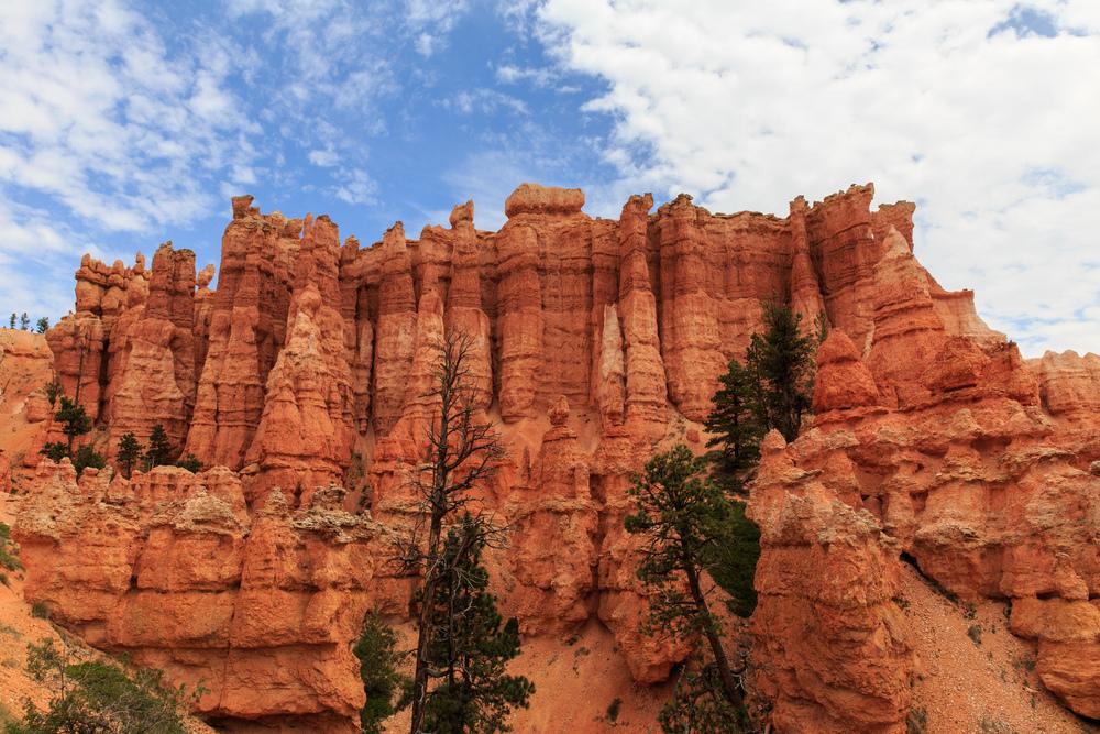 Utah-3241.jpg