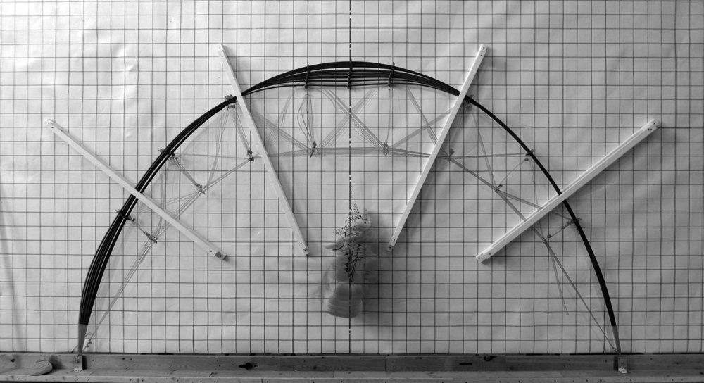 elastica diagonal PL.jpg