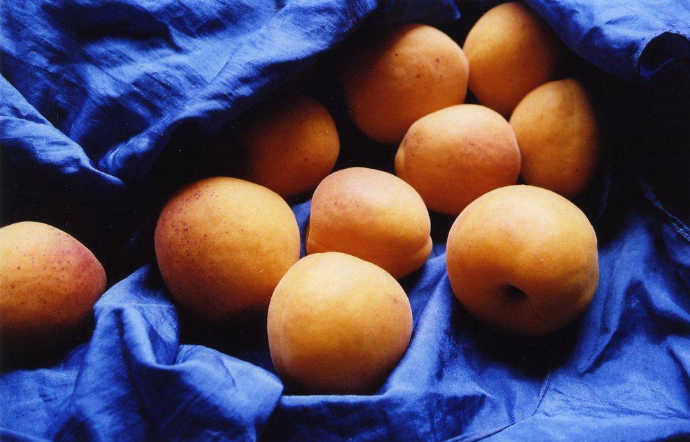 summerfruit3.jpg