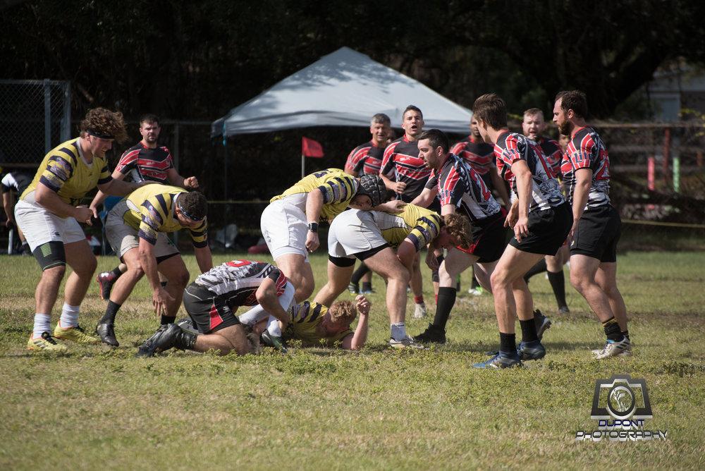 2019-01-19 Rugby-452-1.jpg