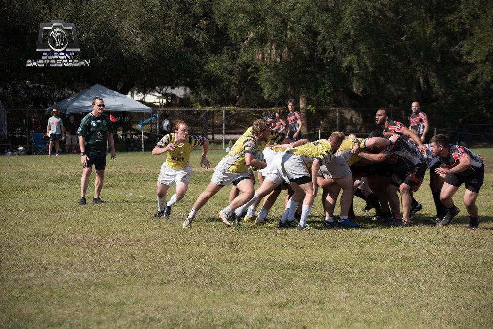 2019-01-19 Rugby-515-1 2.jpg