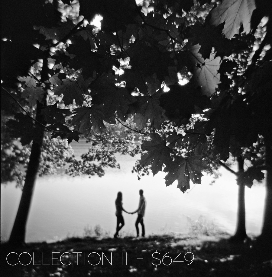 COLLECTION II INCLUDES THE FOLLOWING: UP TO 90 MINUTE SESSION ONLINE GALLERY WITH PRINT ORDERING FILM/INSTANT FILM UNLIMITED HIGH RESOLUTION IMAGES VIA DOWNLOAD LOCAL TRAVEL