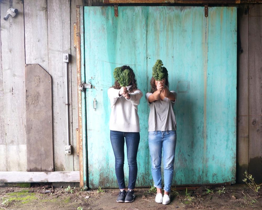 top 5 reasons to eat kale