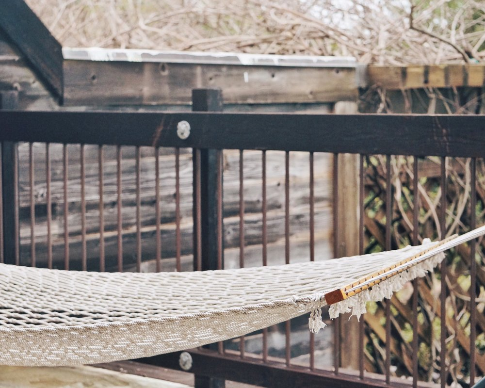 napping in a hammock
