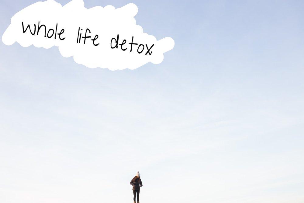 whole life detox