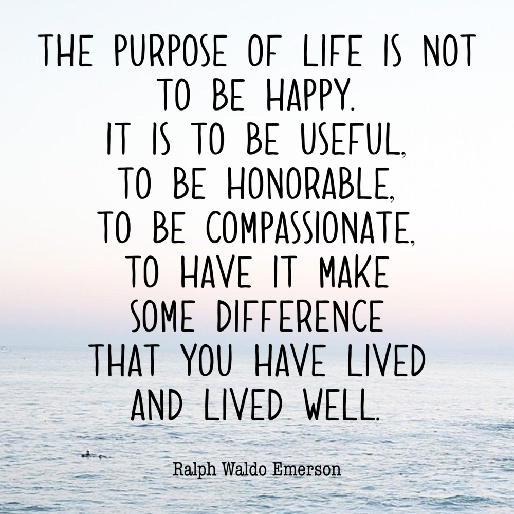 the purpose of life... happinesscollective.org