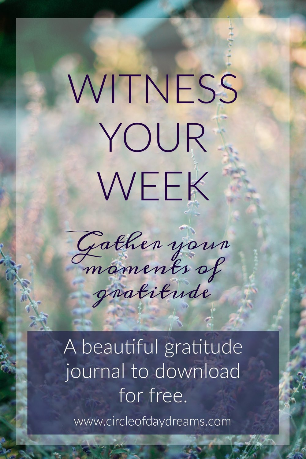Witness your Week. A free gratitude journal download from Circle of Daydreams. www.circleofdaydreams.com