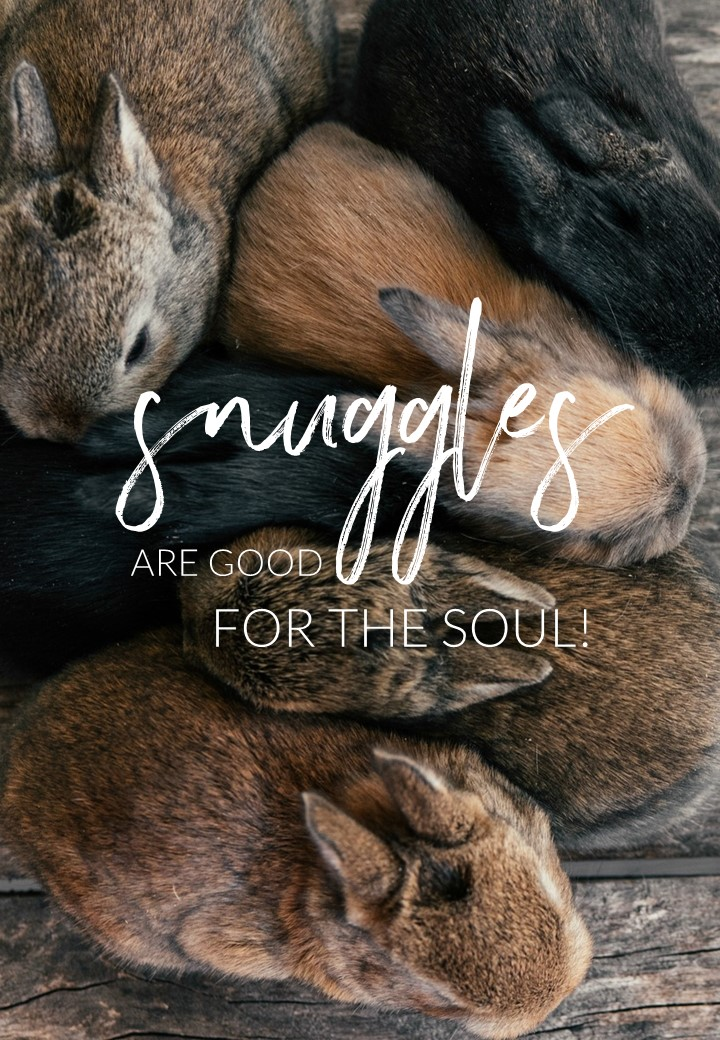 Snuggles are good for the soul. Circle of Daydreams. www.circleofdaydreams.com