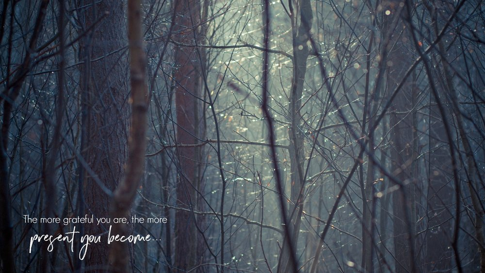 The more grateful you are, the more present you become. A desktop wallpaper from The Garden of Gratitude. Circle of Daydreams. www.circleofdaydreams.com