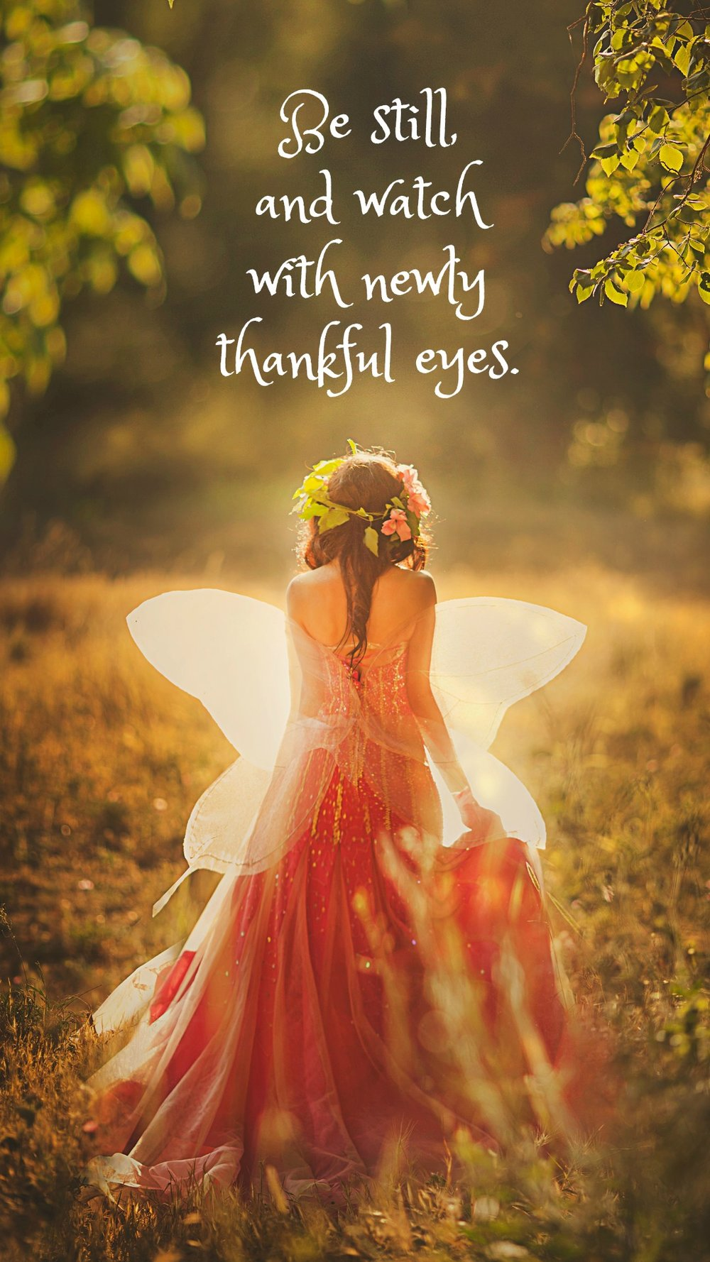 Be still and watch with newly thankful eyes.