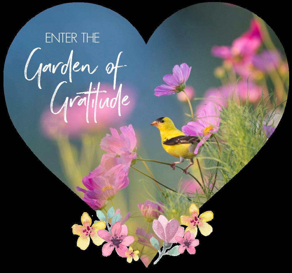 Enter the Garden of Gratitude. Circle of Daydreams. www.circleofdaydreams.com