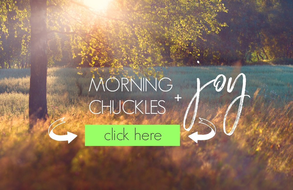 Chuckles + JOY. 5 days to a better morning. Feel awesome as you walk out the door every day! Circle of Daydreams. www.circleofdaydreams.com