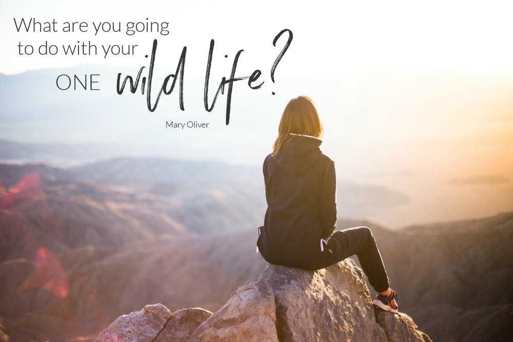 What are you going to do with your one wild life? Circle of Daydreams. www.circleofdaydreams.com