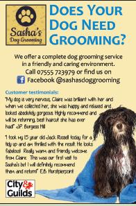 Sashas-dog-grooming.png