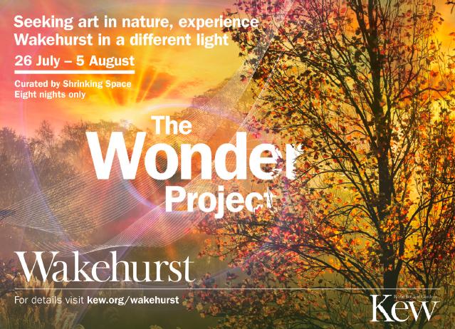 Wakehurt-the-wonder-project.png