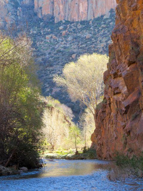 Aravaipa Canyon Wilderness, Arizona. Image by Bobby Magill