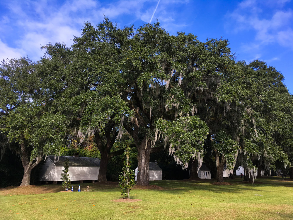Slave quarters on the McLeod Plantation on James Island, South Carolina. These were occupied by the descendants of the plantation's slaves until 1990. Today, this is a Charleston County historic site. © Bobby Magill