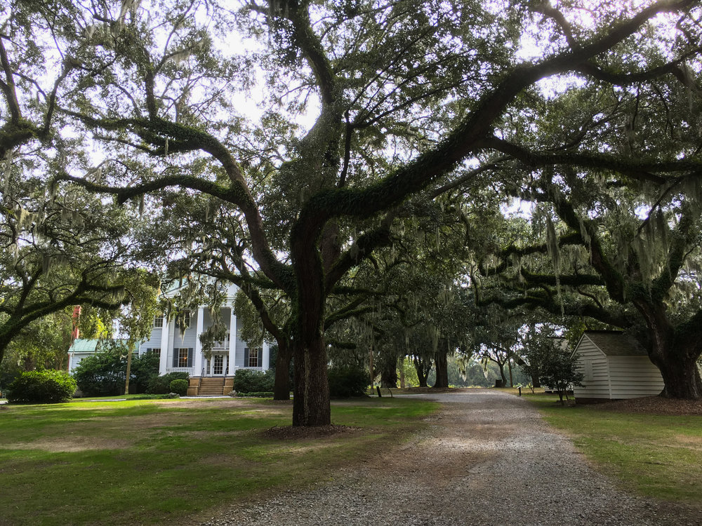 The McLeod Plantation © Bobby Magill