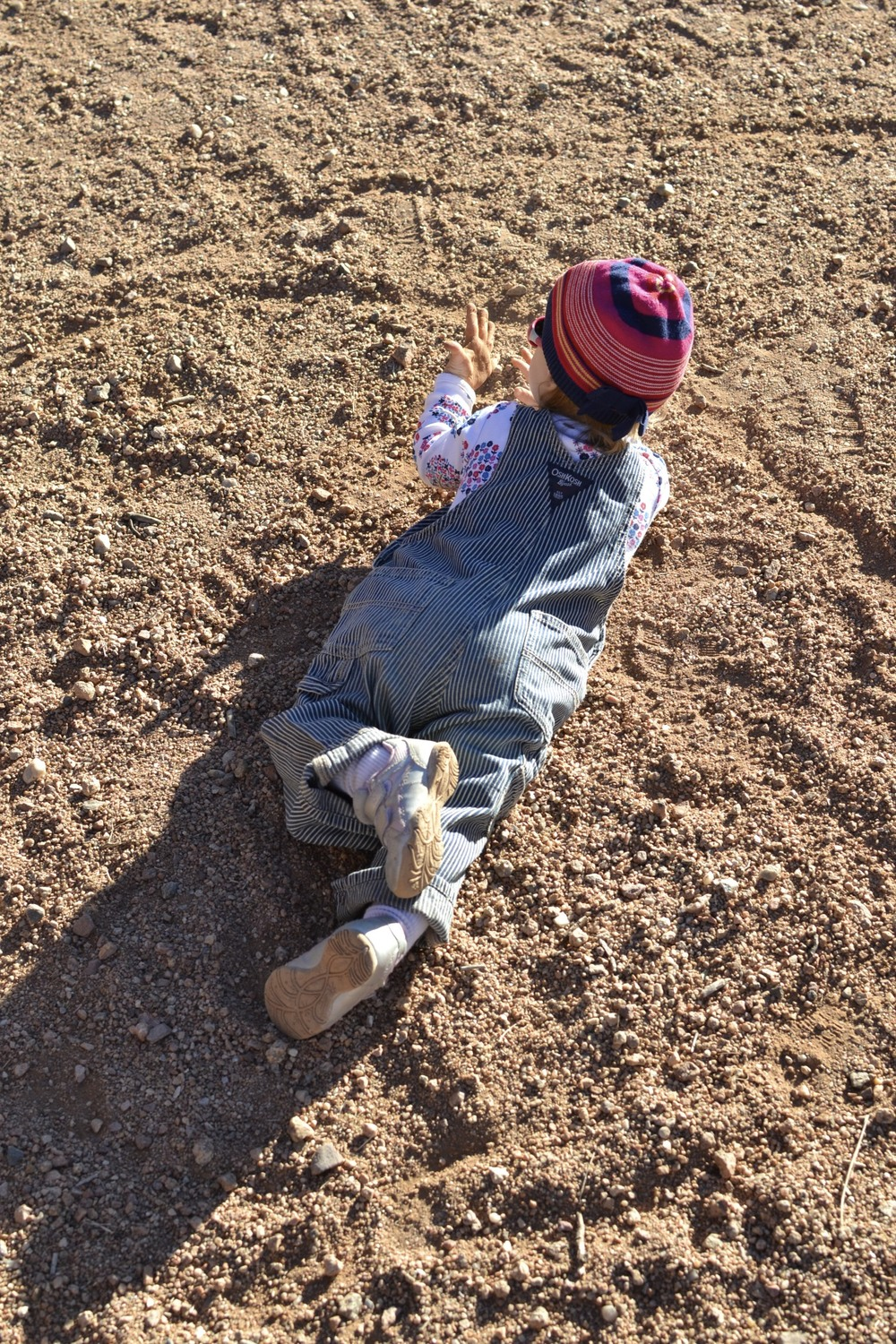 a good hike is never complete without a roll in the dirt...or something like that.