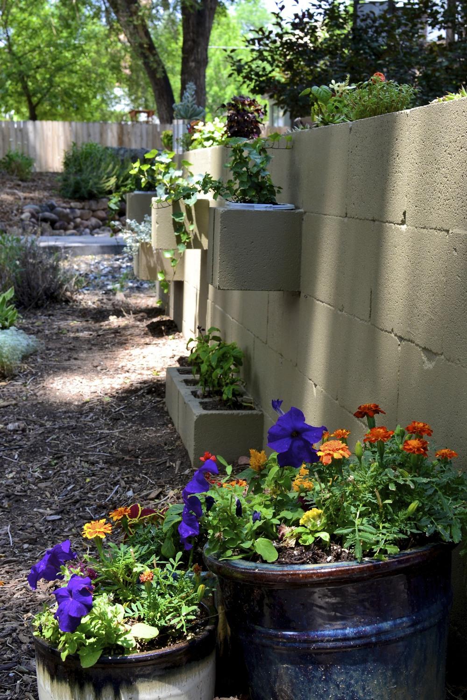 All garden images were taken in August 2013.