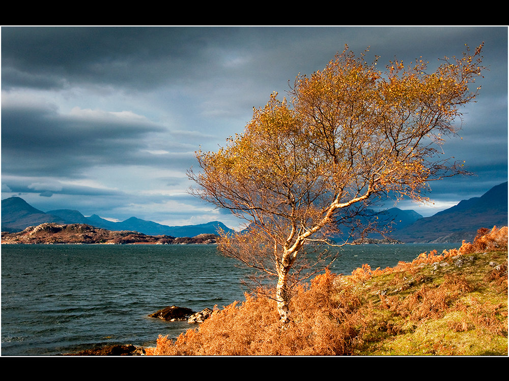 1_autumn in applecross_trevor hunter.jpg