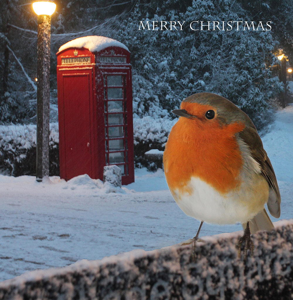 (Christmas Card courtesy of Dave Hull)