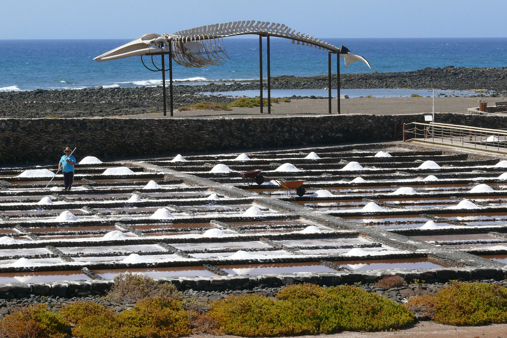1_Salt pans in Fuerterventura_Mike Townley.jpg
