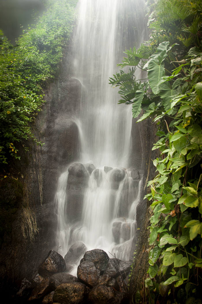 2_Waterfall_Mark Wild (1).JPG