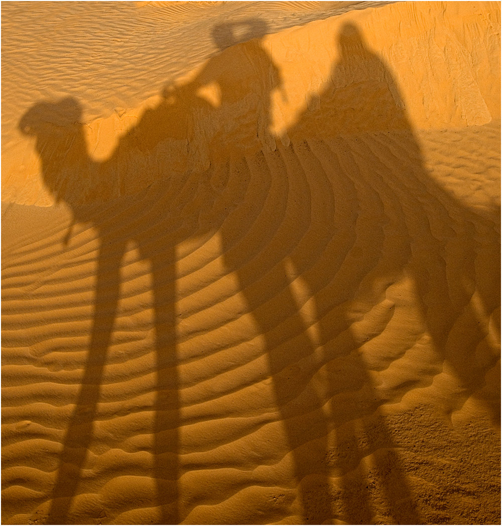 """saharan Safari"" by Ric Harding"