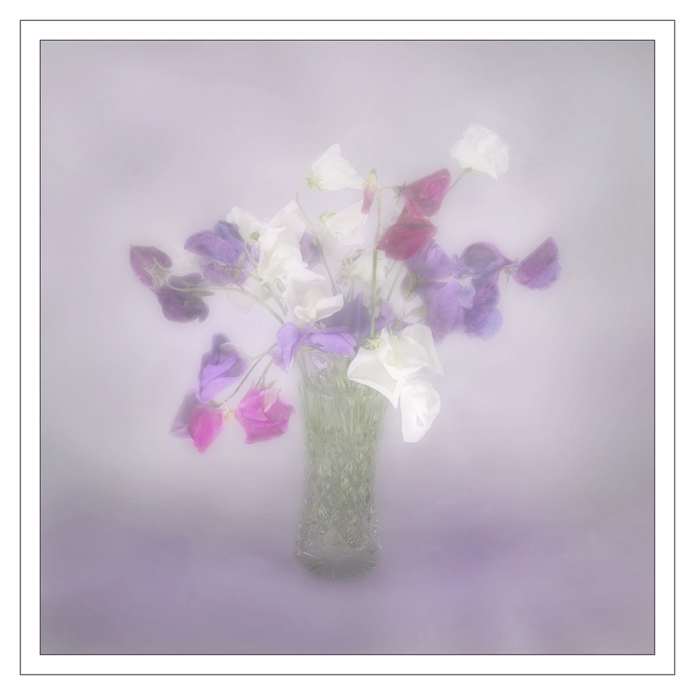 """Sweet Peas"" by Audrey Couchman"