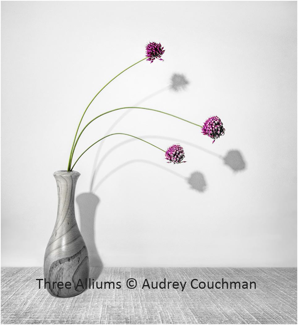 Three Alliums.jpg