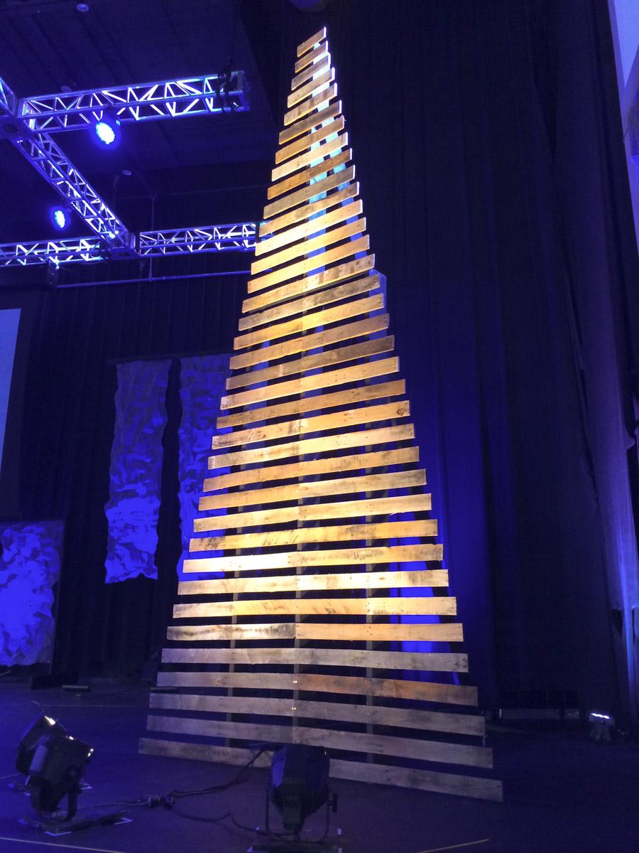 Big Tree-2.jpg