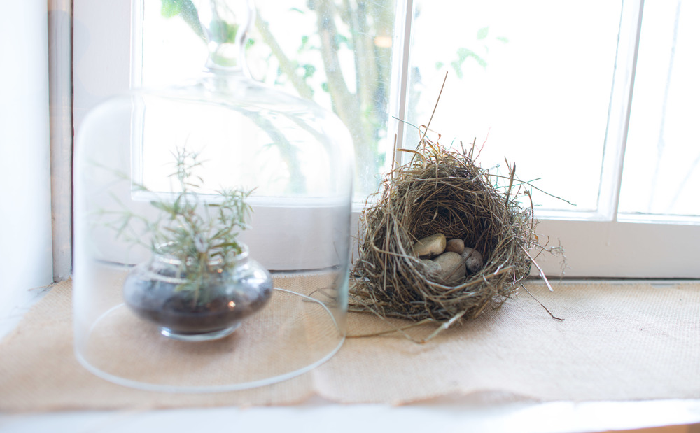 And of course, a robin's nest because it's Ballard and you have to put a bird on it in some way.