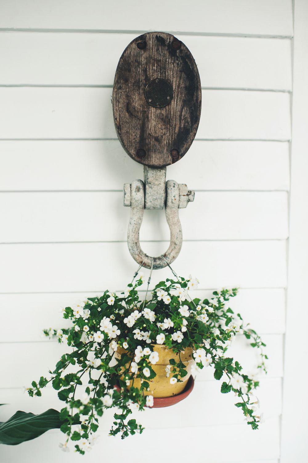 "Here's a close up of the pulley and plant.  Keri wanted ""tiny white flowers"" that spilled over. Adding delicate touches to an otherwise rough and rustic hanger created a complimentary contrast."