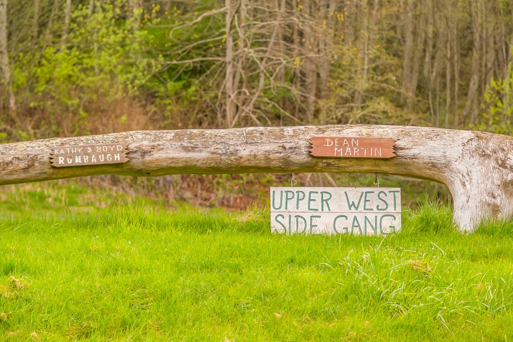 tree sign.jpg