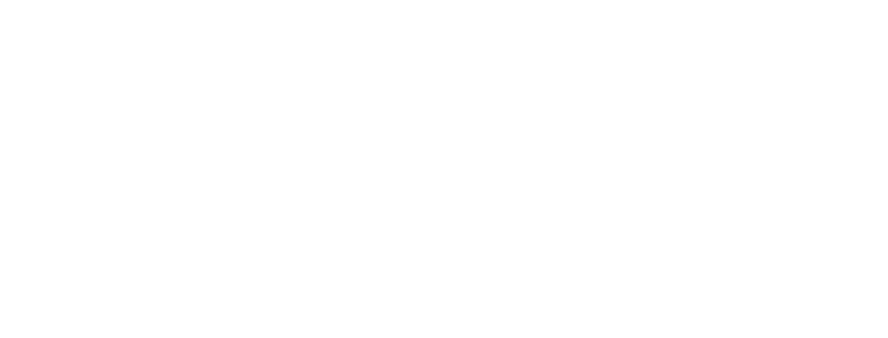 academy logo - white.png